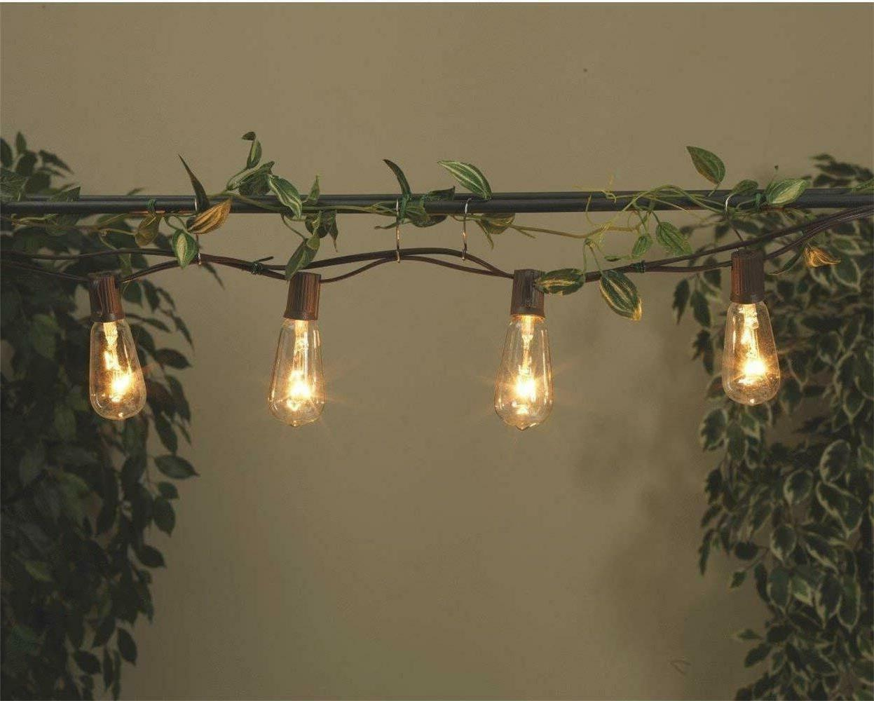 20Ft Outdoor Patio Lights 20 Edison Bulbs Wire