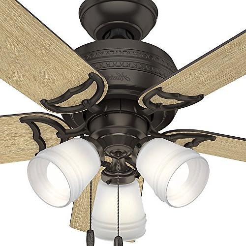 """Hunter 51105 42"""" Ceiling with Light, Small, Premier"""