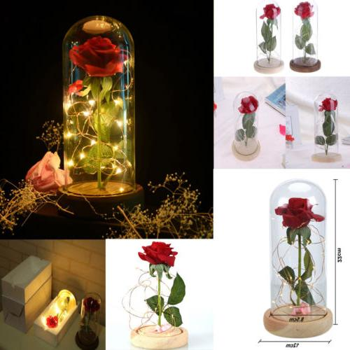 LED Night Flower Valentine' Decor
