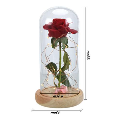 LED Rose Flower Lights Birthday Valentine' Decor