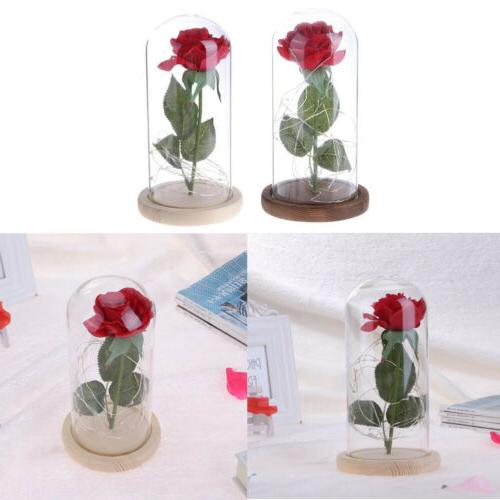 LED Night Flower Birthday Valentine' Decor