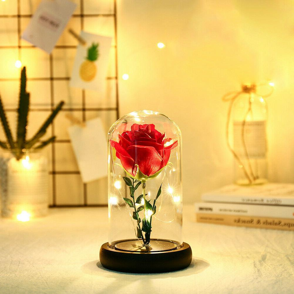 Rose Flower Glass Lights Dome Copper Wire Fairy Gift