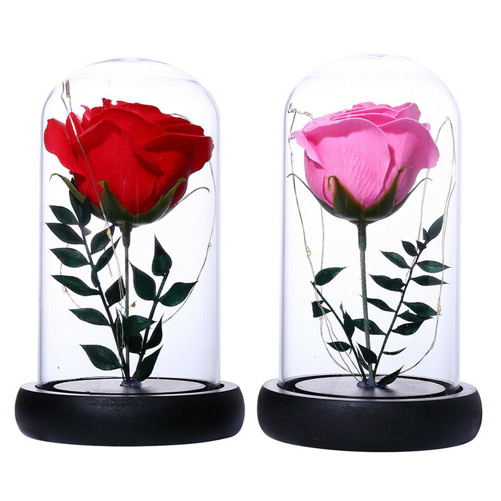 Rose Lights Dome Gift