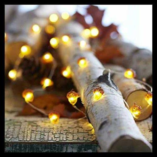 Thanksgiving Lights 10Ft 40Leds Long BROWN Inches