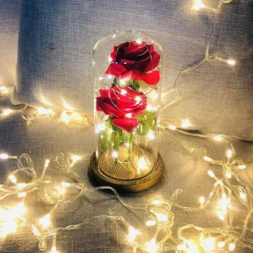 Romantic Rose Powered Flower Light Lights