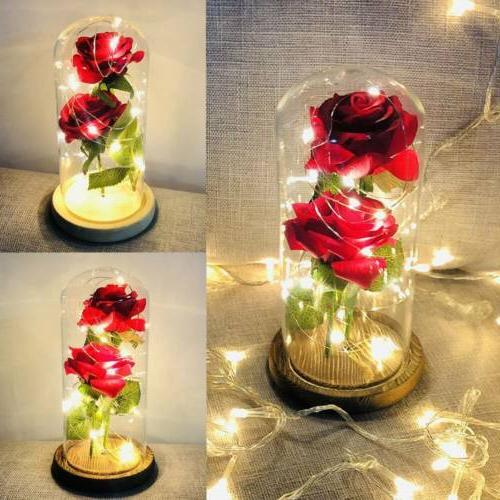 US String Light with Base Lampshade Rose