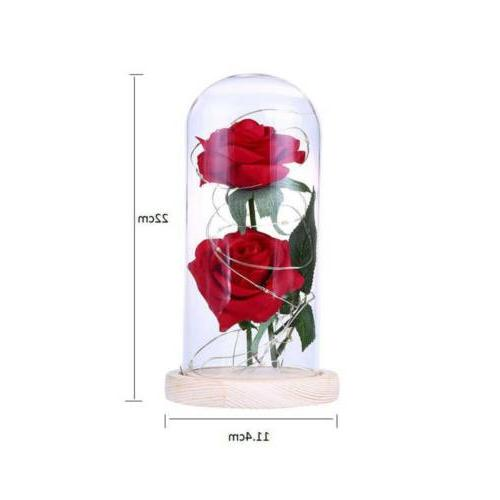 Romantic Rose Powered Light Lamp Lights