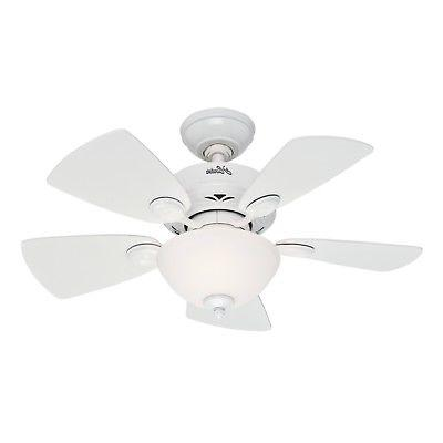 Hunter Watson With Light 34 Inch Ceiling F