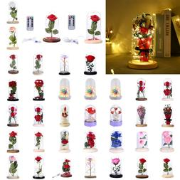 Rose Flower Glass Night Lights Dome Copper Wire Fairy Lamp V