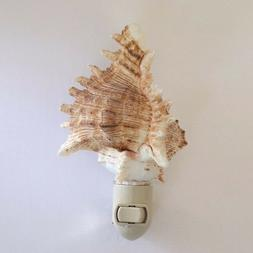 sea shell night light brown and white