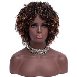 Mildiso Wigs for Black Women Brown Ombre Afro Kinky Curly Wi
